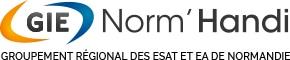 Logo GIE Norm'Handi, groupement régional des ESAT et EA de Normandie